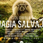 4.COLOMBIA MAGIA