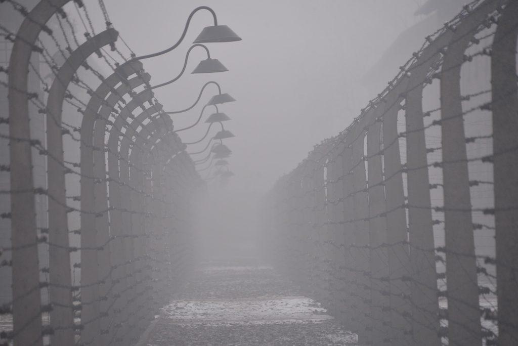 01-.Postes y alambrada en Auschwitz I - Foto por Pawel Sawicki © Auschwitz-Birkenau State Museum - Musealia